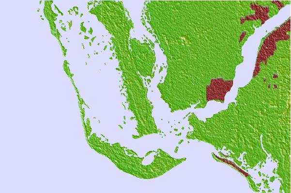 Tide stations located close to Tropical Homesites Landing, Pine Island, Florida