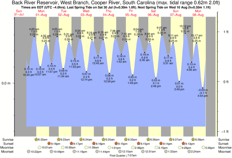 Back River Reservoir, West Branch, Cooper River, South Carolina tide times for the next 7 days