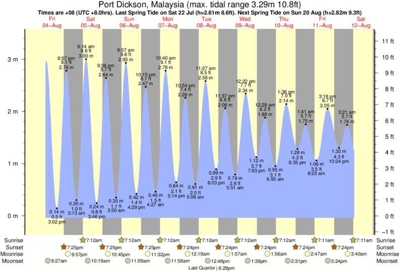 19 Awesome Laguna Beach Tide Chart
